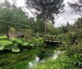 Ninfa: giardini meravigliosi e dove trovarli